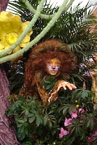 Jungle cat copy
